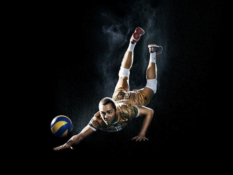 Volleyball World Champions 2014
